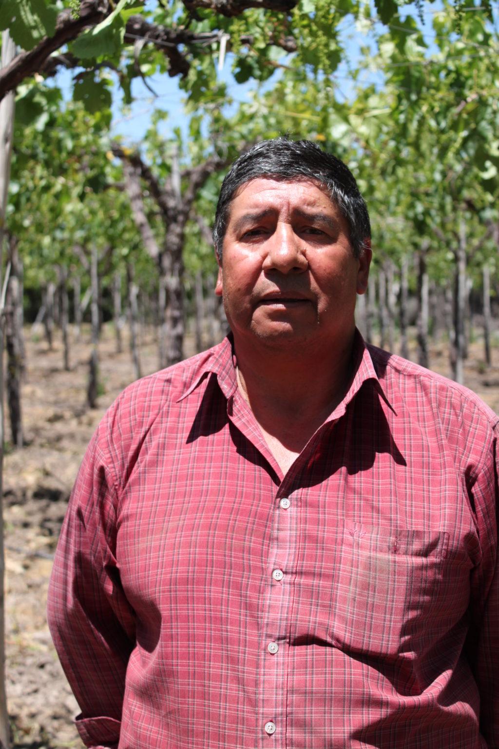 José Luis Lopez Espindola, Tafeltrauben-Produzent der Kooperative Mi Fruta