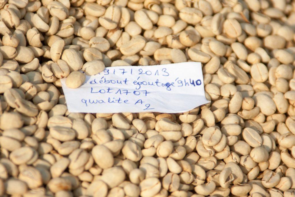Musasa Coffee