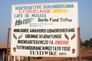 Musasa Koffee