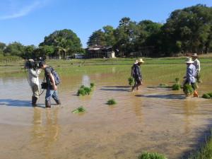Ton- und Kameramann des Arte-Filmteams stehen im knöcheltiefen Wasser.