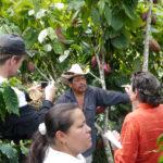 Bauer mit seinem Besuch vor einer Kakaopflanze