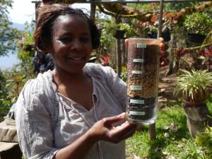 Im Kaffeeparcours wird der Anbau des Heißgetränks erklärt