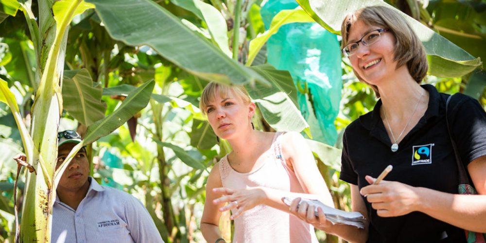 Der Norden Perus – das Mekka der Fairtrade Bio Bananen