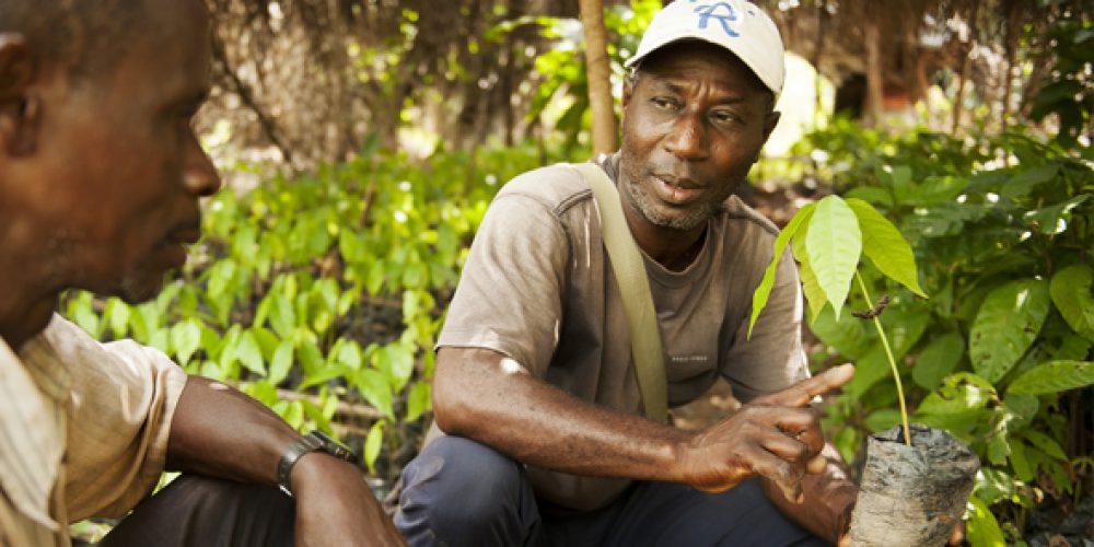 """""""Toubabou"""" bei der Kakao-Schulung"""