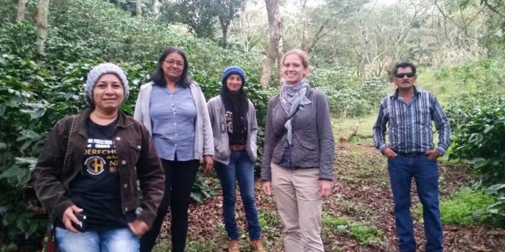 Ein Herbst in Honduras III