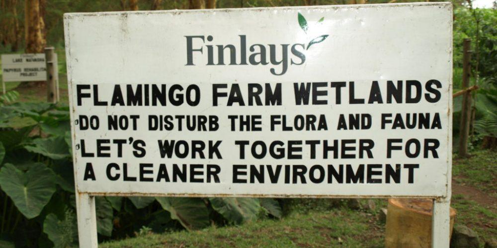 Von Hydrokultur und Tröpfchenbewässerung