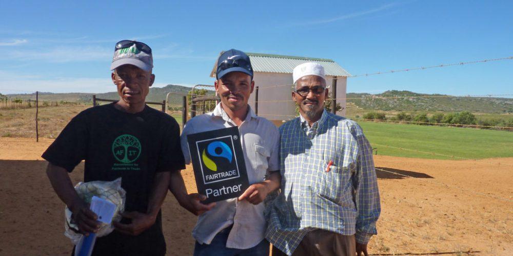 Zu Besuch bei der Rooibos Kooperative Driefontain