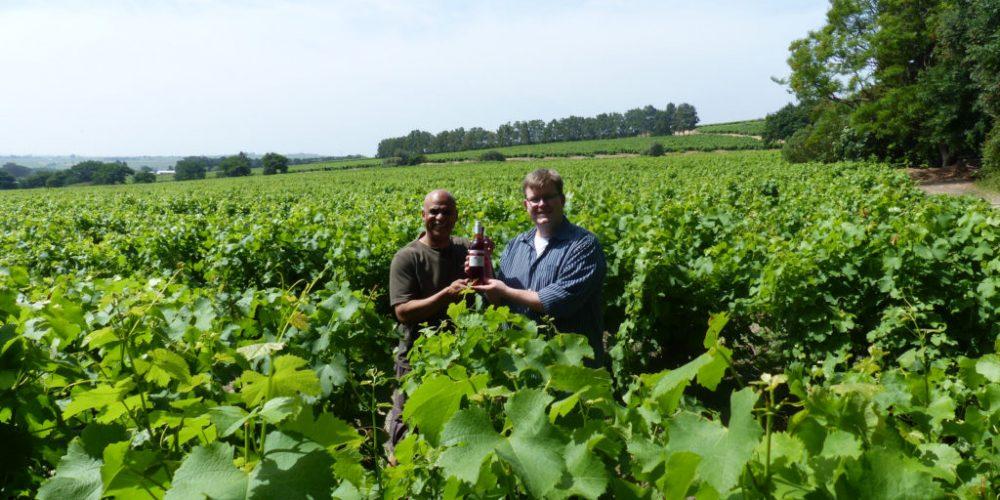 Meinem Lieblingswein auf der Spur – Fairtrade-Produzenten in Südafrika