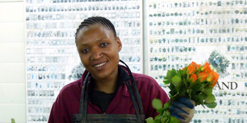 Fairtrade Rosen – wenn Tansania bunt blüht
